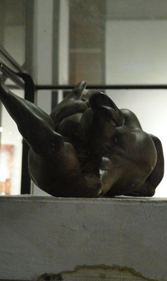 erogina_2010_fotografia_daniel_otero_museo_Sor_Josefa_Diaz_Clucellas (100)