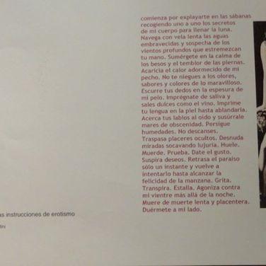 erogina_2010_fotografia_daniel_otero_museo_Sor_Josefa_Diaz_Clucellas (60)
