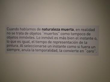 mirar_un_cuadro (10)