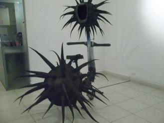 erizo (8)
