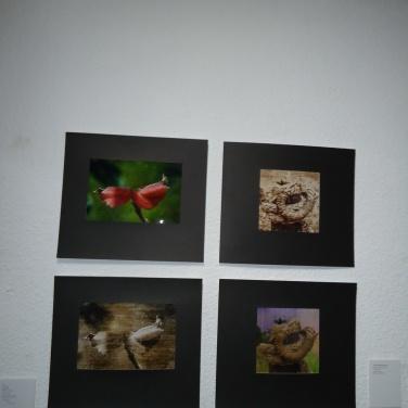 roberto-aguirre-molina-museolopezclaro-fotografia-luzdeciudad-danielotero_12
