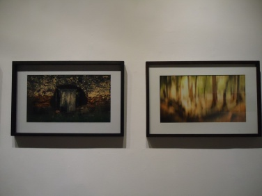 daniel-otero-muestra-uno-museo-municipal-artes-visuales-photography-luzdeciudad (29)