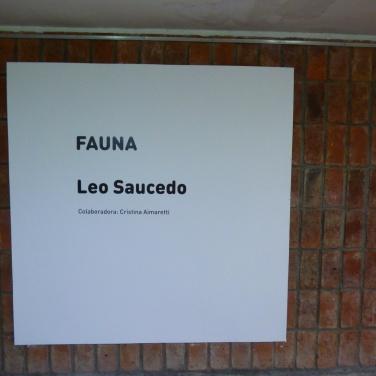 leo-saucedo-luzdeciudad-museo-lopezclaro-danielotero (11)
