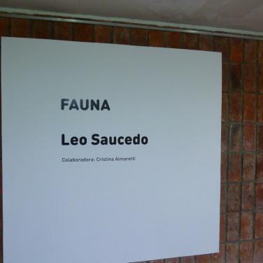 leo-saucedo-luzdeciudad-museo-lopezclaro-danielotero (3)