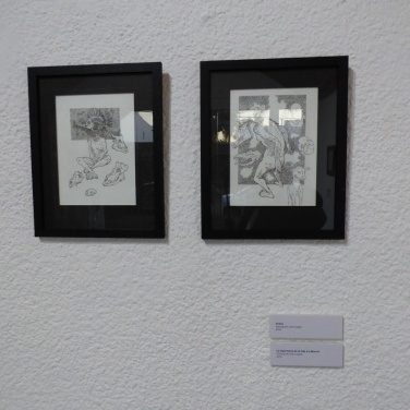 leo-saucedo-luzdeciudad-museo-lopezclaro-danielotero (5)