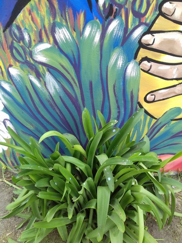 #LisHolka#LisStangaferro#Avellaneda#SanManuel#Muralismo. Días atrás, tuvieron lugar en Rosario, dos intensas jornadas de muralismo en la localidad de San Manuel.Colonia San Manuel es una localidad argentina ubicada en el Departamento General Obligado de la Provincia de Santa Fe. Se encuentra 5 km al Oeste del arroyo El Rey y 11 km al Norte de La Sarita, de la cual depende administrativamente, y a 50 km de Reconquista.
