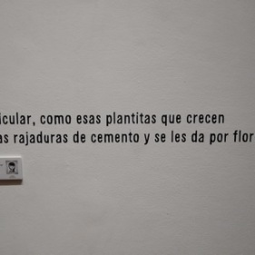 colectivo_ludopata_museo_lopez_claro (5)